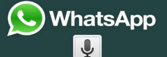 Audio do Whatsapp