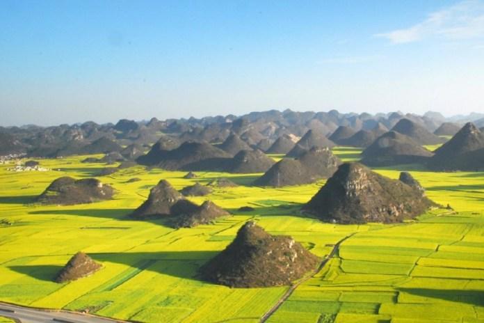 Campos de colza em Luoping, China