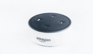 Using Google Home or Amazon Echo for Home Support
