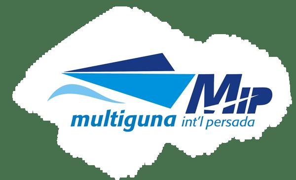 PT Multiguna Internasional Persada Logistics