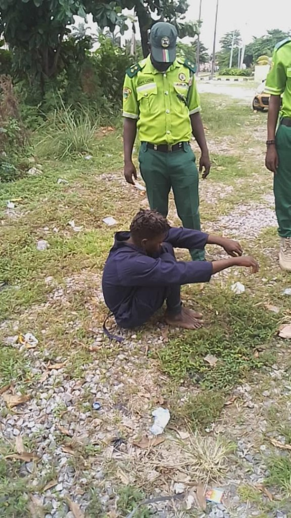 Suspected thief Caught On Motion while Removing Expensive Lights In A Garden