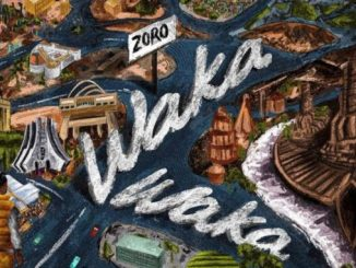Waka Waka by Zoro Audio Mp3 Download 320kbps Music