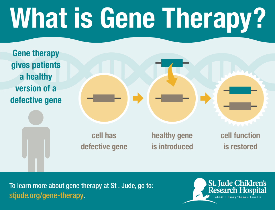 Image result for gene therapy