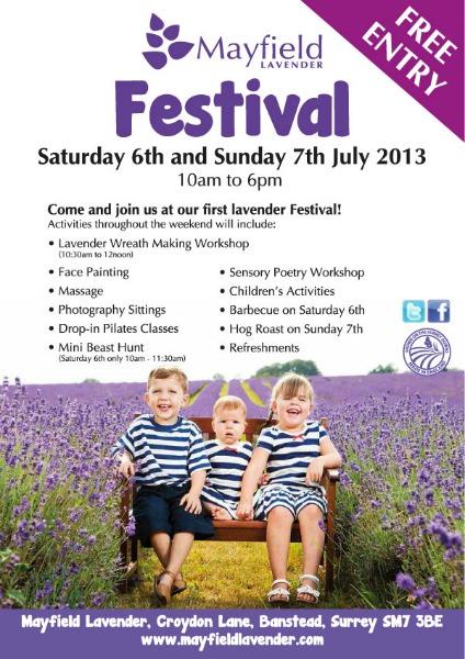 Mayfield Lavender Festival