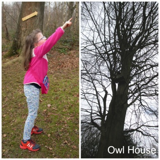 Limpsfield Common Owl House