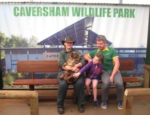 Caversham Wildlife Wombat