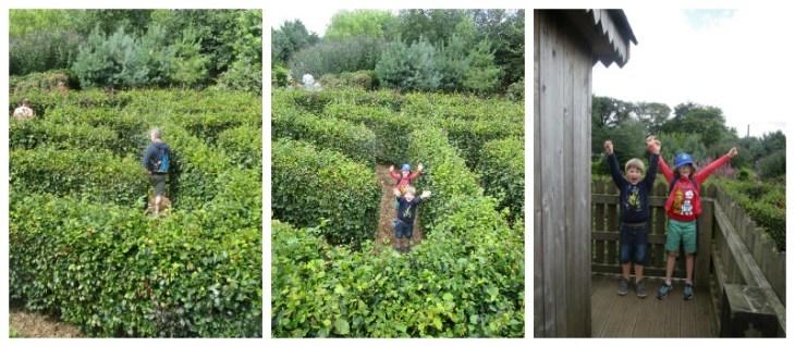 Hidden Valley Discovery Park maze