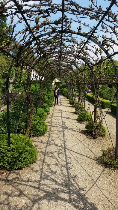 Loseley Park gardens