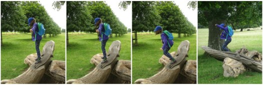 H flying at Dyrham Park
