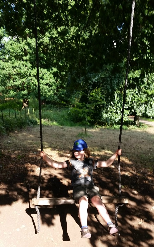 Osterley Park and House giant swing
