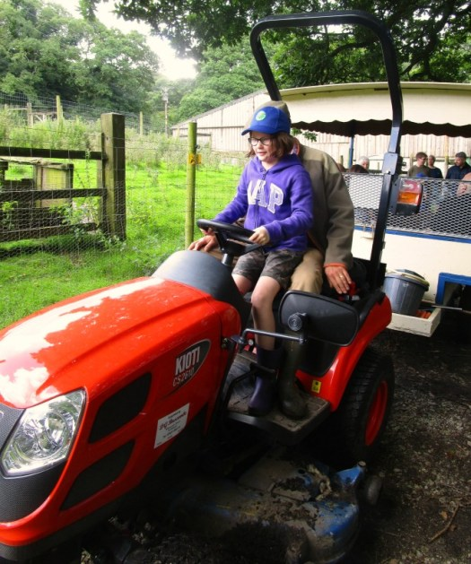 driving the tractor at Coombe Mill