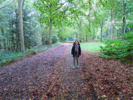 Castle Howard Ray Wood walk
