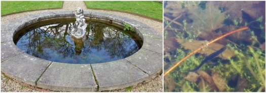 Clandon Park Dutch Garden and Newt