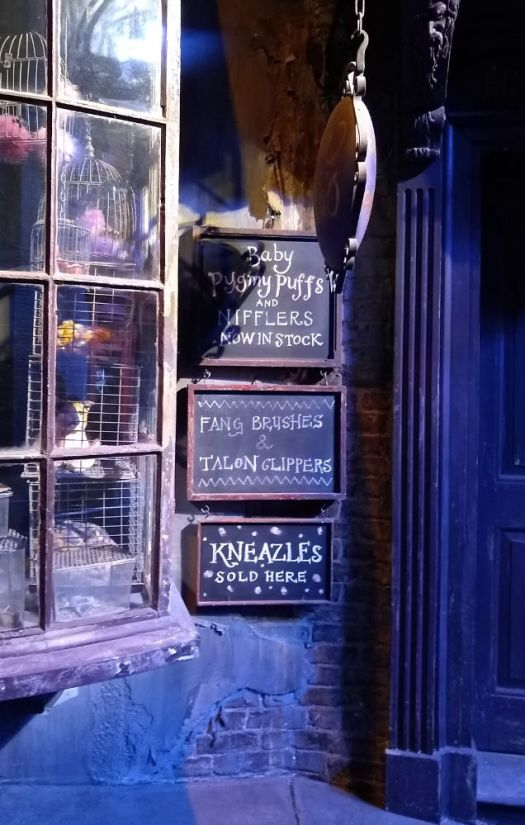 Magical Menagerie Diagon Alley signs