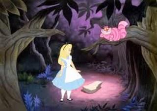 Alice incontra lo stregatto