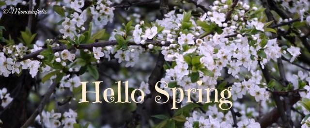 ramo di susino in fiore con scritta Hello spring