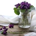 Violette candite, come realizzarle in casa