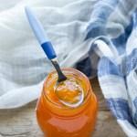 marmellata di melone