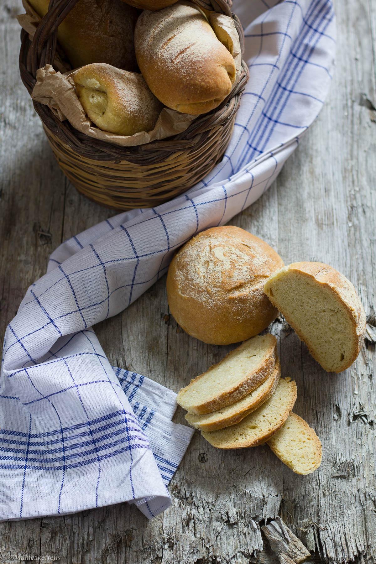 pane pasta madre