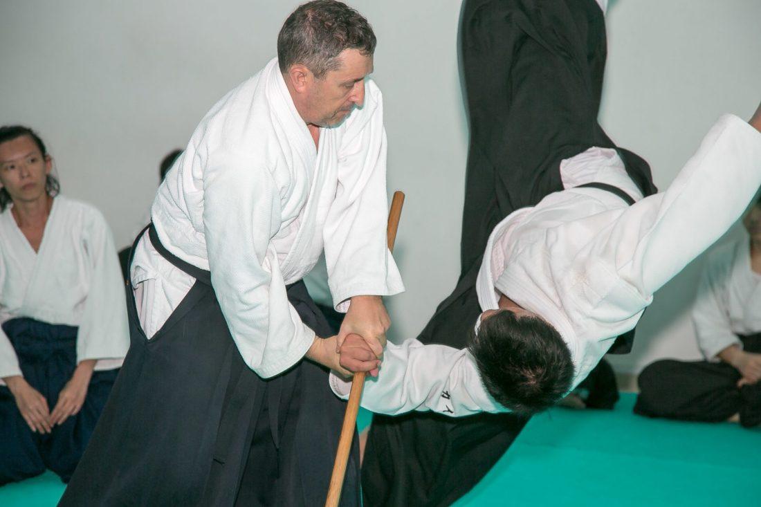 Mumei Shudan Aikido Weapons - Jo/Stuff