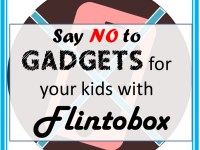 flintobox review subscription box