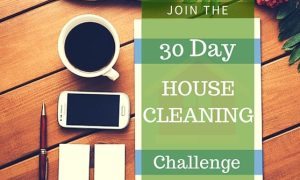 cropped-30-day-cleaning-challenge.jpg