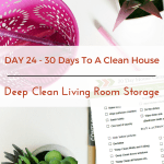 Day 24 – 30 Day House Cleaning Challenge: Deep Clean Living Room Storage Units