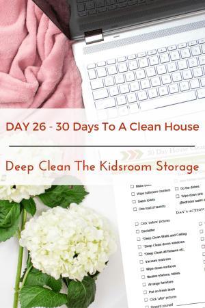 Deep Clean The Kidsroom storage areas