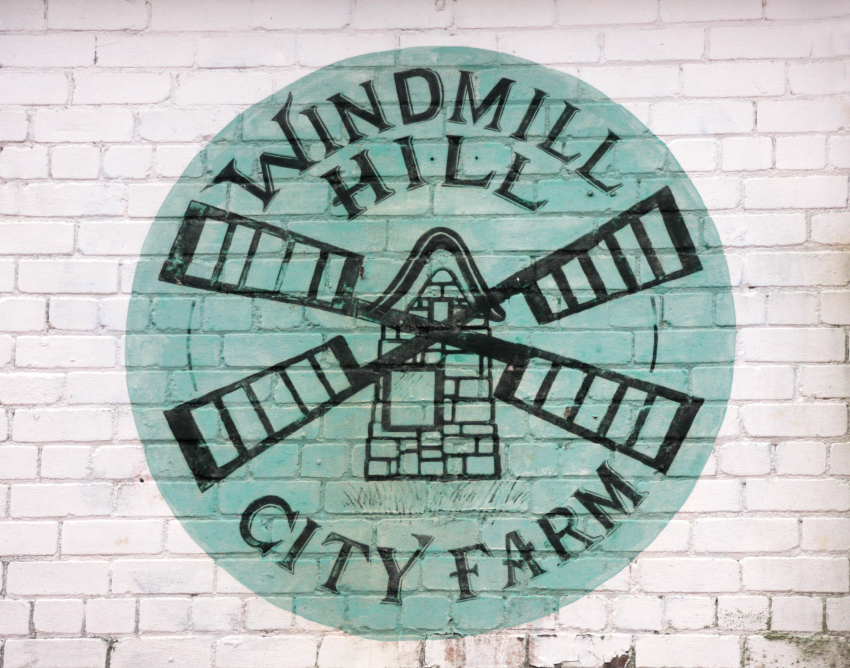 Windmill Hill City Farm Bristol 1