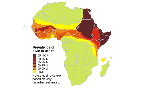 statistics fgm, how many cases of fgm, which countries in africa practise FGM