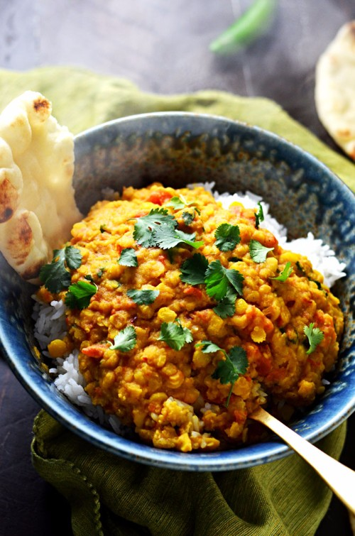 slow cooker recipes spiced indian lentil stew