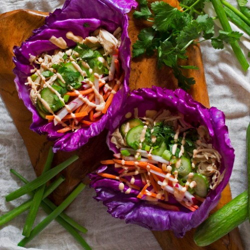 slow cooker recipes banh mi chicken tacos