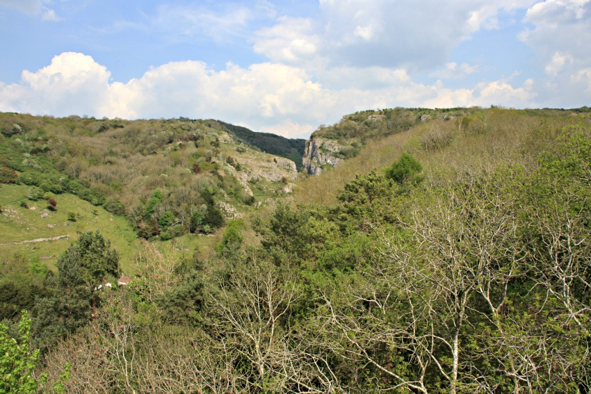 cheddar gorge in somerset