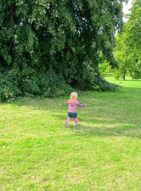 Kew Gardens Phone No: Plantasia And Poisons At Kew Gardens
