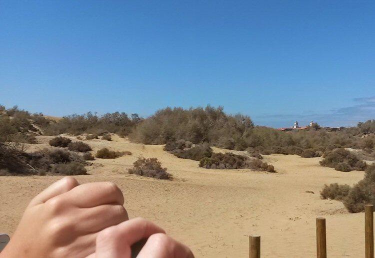 gran-canaria-maspalomas-camel-view