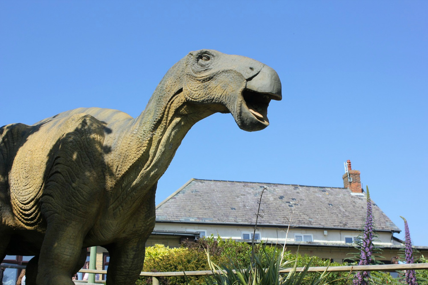 One of the animatronic dinosaurs at Blackgang Chine - hunting the Isle of Wight dinosaurs