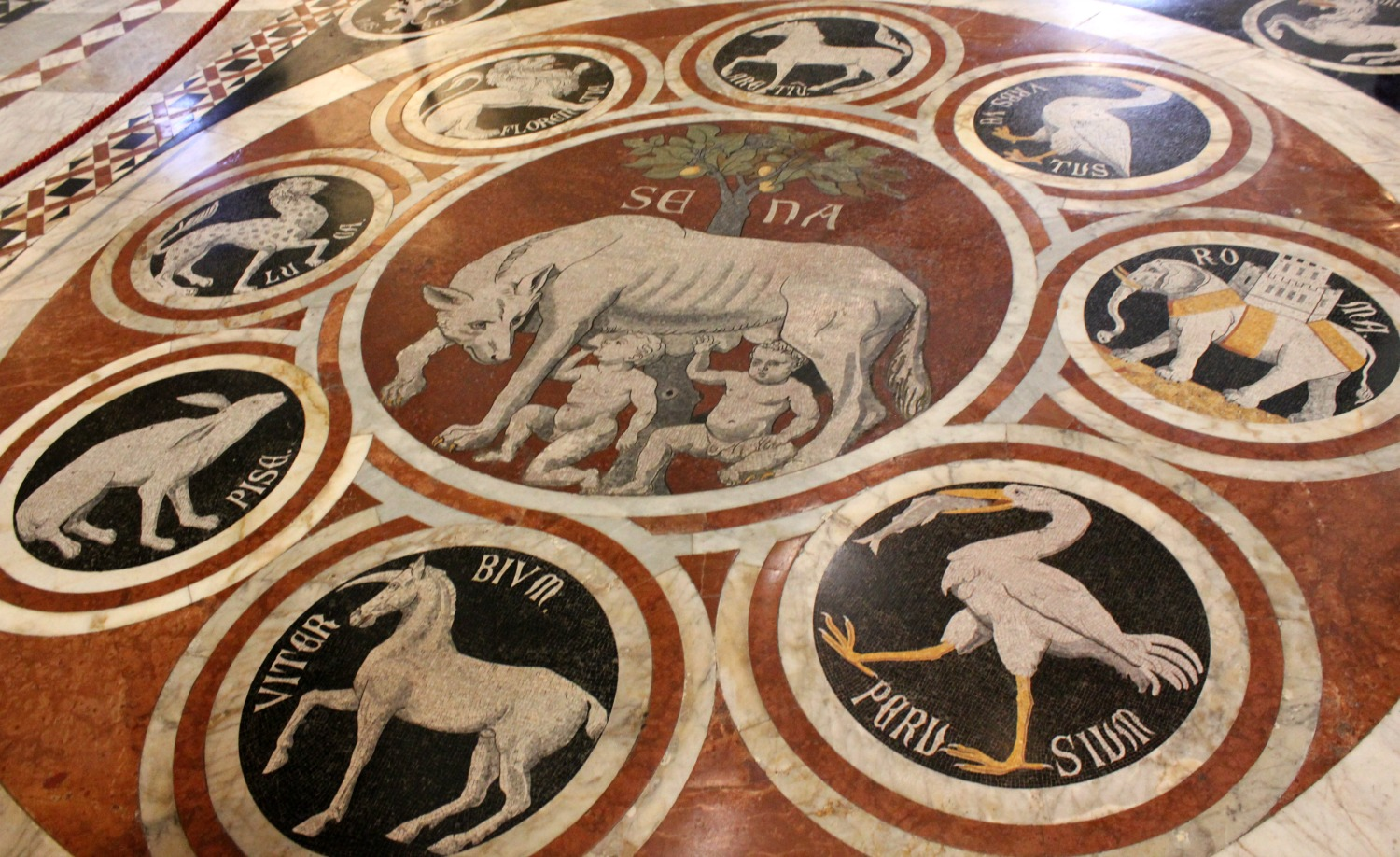 The emblems of the cities of Italy on the floor of the cathedral One of the shields and emblems showing the animals and symbols representing Siena's 17 areas or contrada - exploring Siena with kids, our tour discovering art, history and animals