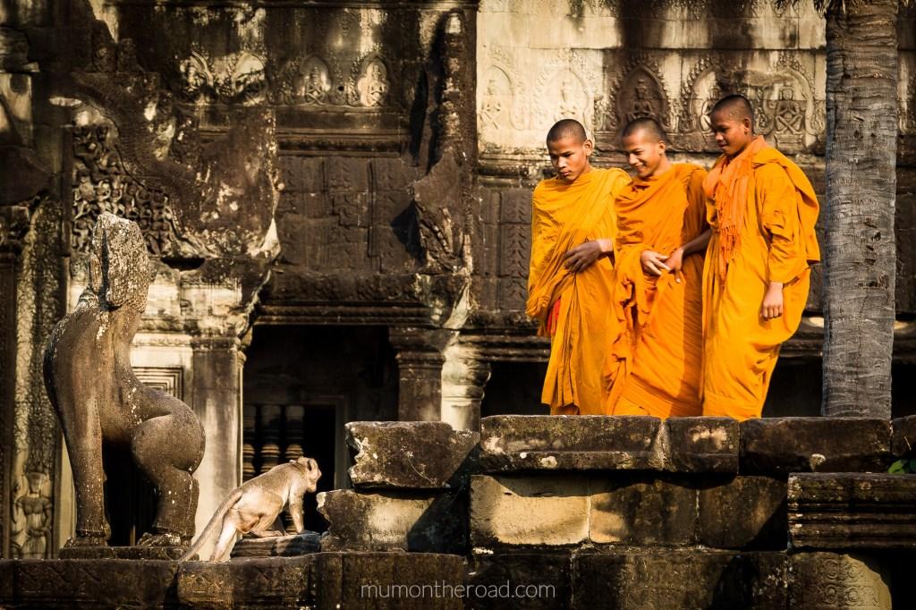 Jeunes moines bouddhistes effrayés par un singe dans les ruines d'Angkor Vat au Cambodge