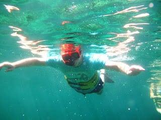 Island routes snorkelling Jamaica