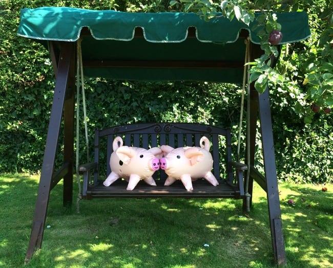 Pass The Pigs - Swine on a Swing