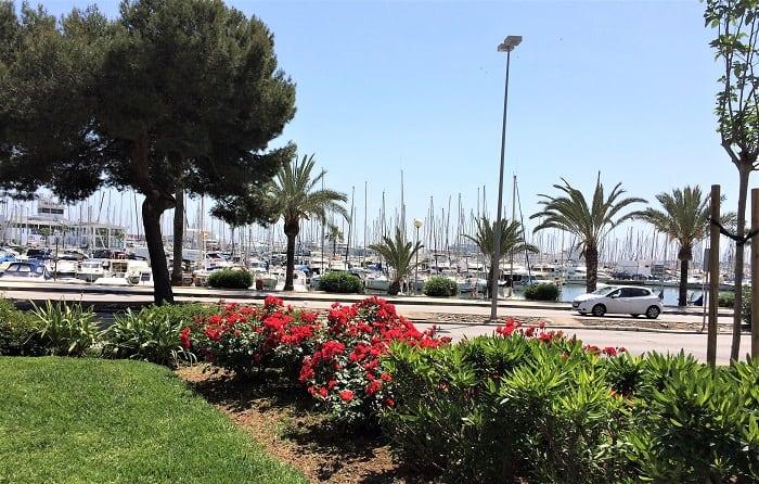 yachts in palma, Mallorca