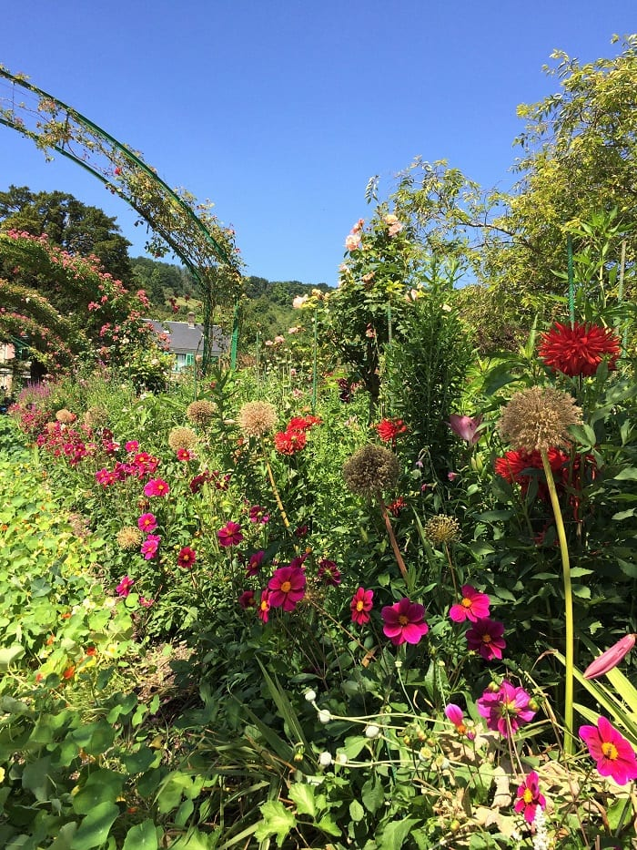 Flowers in Clos Normand of Monet's garden