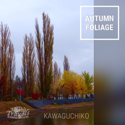 Autumn colours, Kawaguchiko