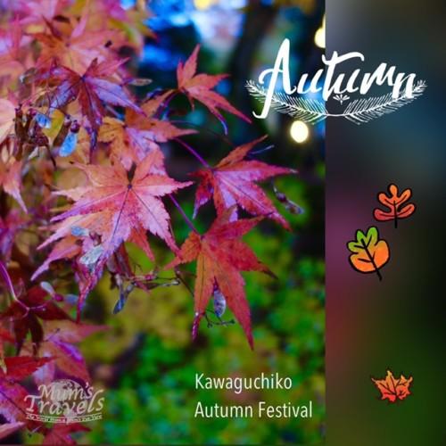 Maple leaves, Kawaguchiko