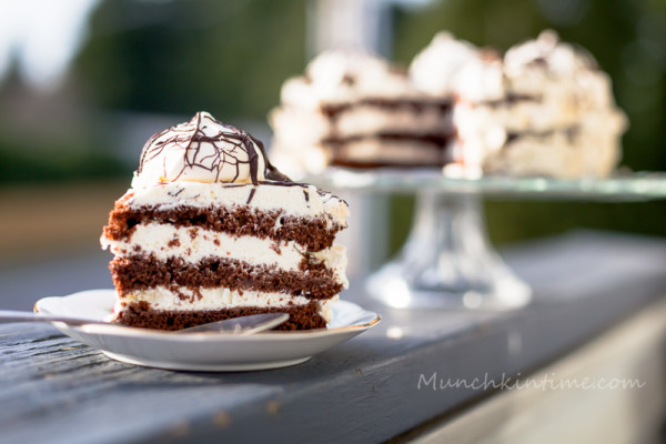 Moist Chocolate Cake with Sour Cream Frosting