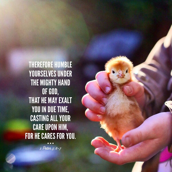 Quote of the Day #quoteoftheday http://www.munchkintime.com/