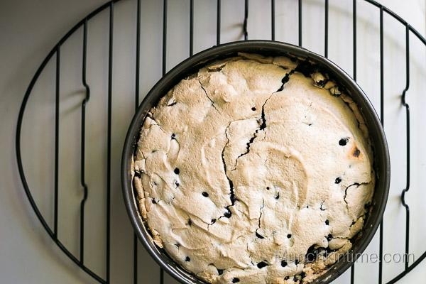 Blackcurrant Pie Recipe from www.munchkintime.com