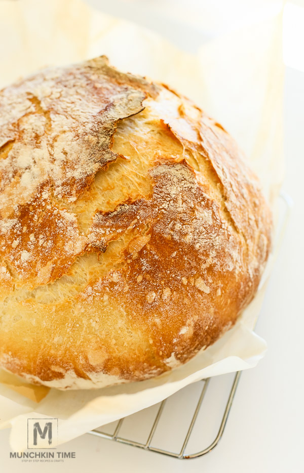 Best No Knead Bread Recipe