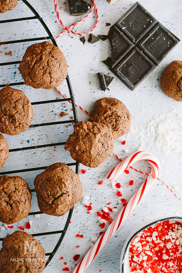 CHRISTMAS Cookies Whoopie Pie Recipe - delicious Christmas Cookies to put in the stocking or to deliver to your neighbors. They are so good!