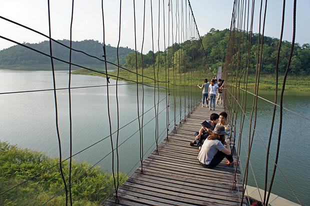 Puente-del-parque